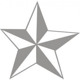 Star Glass Safety Sign 100W x 100Hmm