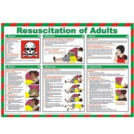 Resuscitation Of Adults Laminated Poster