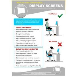Display screens 420w x 595h  health and safety poster